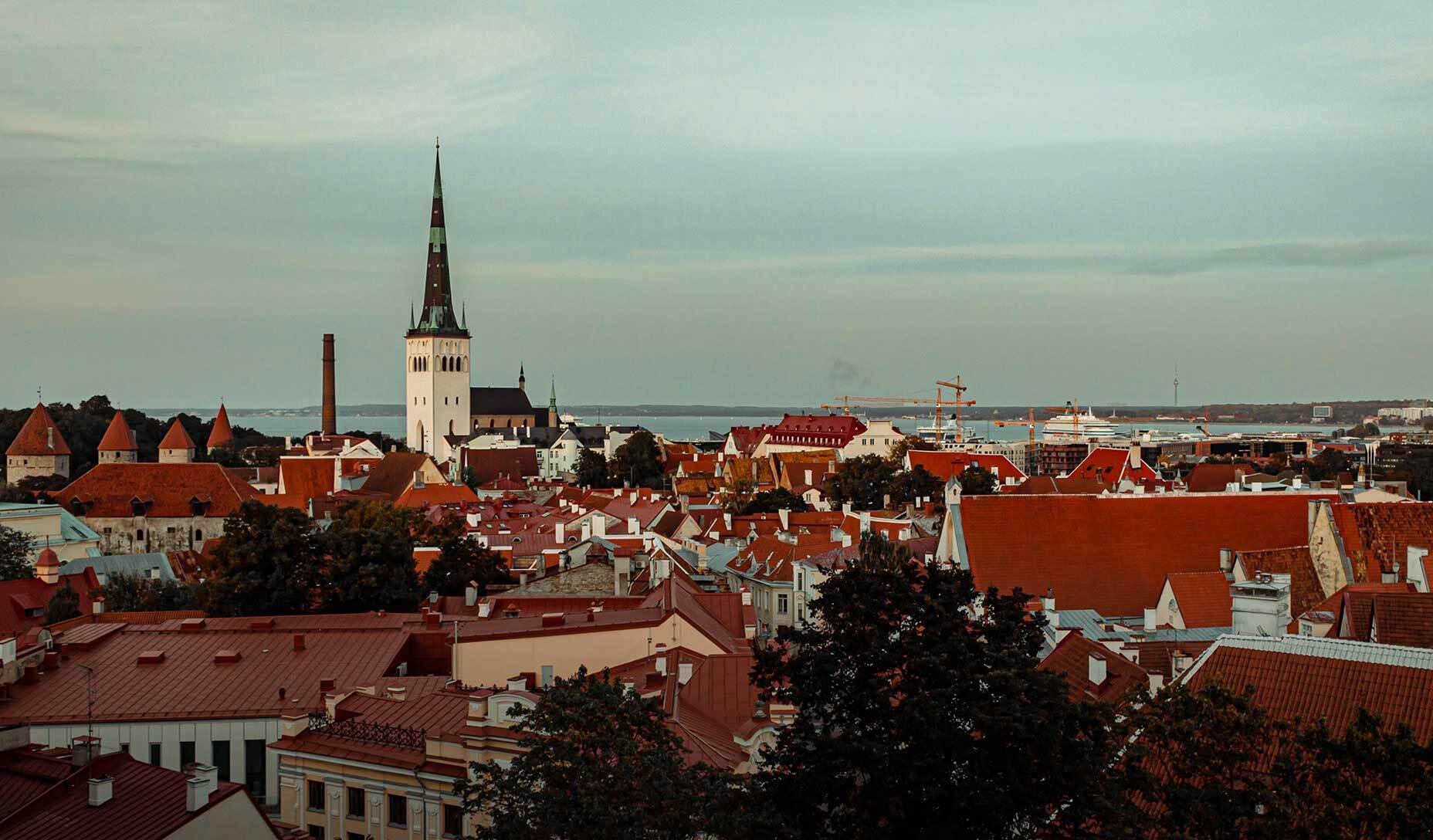 COVID making Estonia new heaven for business